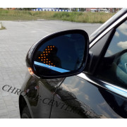 Зеркала заднего вида с LED поворотником VW Passat B6